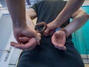 Der Bundesrat will Sexualdelikte und Gewalttaten härter bestrafen. (Bild: KEYSTONE/URS FLUEELER)