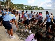 Jetzt wird im Paradies in die Hände gespuckt: Die Insel Boracay wird in den nächsten Montane auf Vordermann gebracht - hier sammeln Polizisten am Strand Seegras. (Bild: KEYSTONE/AP/AARON FAVILA)