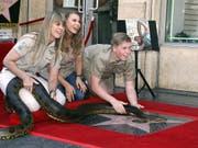 """Die Familie des 2006 verstorbenen Dokumentarfilmers Steve """"Crocodile Hunter"""" Irwin enthüllt den neuen Stern auf dem """"Walk of Fame"""" in Hollywood. (Bild: KEYSTONE/EPA/MIKE NELSON)"""