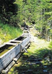 Vorbei an einer offenen Holzrinne der Suone Saxon, die 32 Kilometer lang ist. (Bild: Geraldine Friedrich)