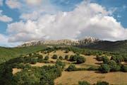 Blick in die Hügel und Berge bei Lodè, im Hinterland von Sardiniens Ostküste. (Bild: Urs Oskar Keller)