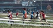 Erfreut sich zunehmender Beliebtheit: der Lozärner Cross auf der Luzerner Allmend.Bild Pius Amrein (11. Februar 2016)