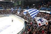 Fans in der Bossard-Arena in Zug. (Bild Stefan Kaiser)