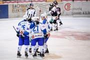 Die Zuger jubeln waehrend dem 1/16-Finalspiel im Swiss Ice Hockey Cup zwischen dem EHC Wiki-Muensigen und EV Zug, am Mittwoch. (Bild: KEYSTONE/Manuel Lopez)