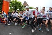 Am 25. April findet der grösste Zentralschweizer Laufsport-Anlass zum 38. Mal statt. (Bild: Philipp Schmidli)