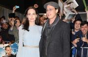 Angelina Jolie wurde nach einem Elefantenritt von Tierschützern kritisiert. (Bild: Splashnews)