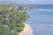 Traumhafter Blick über wogende Palmen, tiefblaues Meer und die herannahenden Wellen an der Diamond Head Beach im Ferienzentrum Waikiki. (Bild: Andreas Fässler)