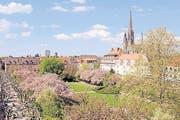 Der Feuerbachpark in der 2000 Jahre alten Stadt Speyer. (Bild Klaus Venus)