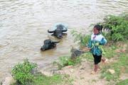Auf dem Schulweg: Doch viele Kinder in den Bergregionen Vietnams müssen frühzeitig die Schule verlassen, um auf dem Feld oder als Souvenirverkäufer zu arbeiten. (Bild: Anemi Wick)