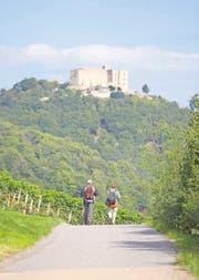 In Tagesetappen lässt sich auf dem Pfälzer Weinsteig wandern, hier unter dem Hambacher Schloss. (Bild DWI)