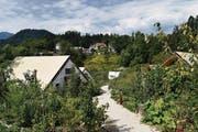 Grün dominiert im «Glamping Garden Village» in Bled. (Bild: Samuel Koch)