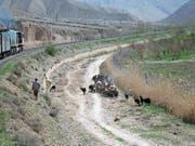 Im Zug südöstlich von Teheran, vorbei an Schafherden.