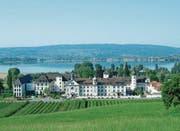 Eingebettet in eine intakte Natur: die Klosteranlage am Seeufer in Hegne. (Bild: PD)