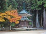 Teil der Tempelanlage in Koyosan. Auf diesem Berg gründete der 30-jährige Mönch Kukai im Jahr 804 den Shingon-Buddhismus. Eine Million Pilger kommen jedes Jahr hierher.
