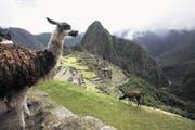 Machu Picchu – Zeuge der vergangenen Hochkultur. Die immer noch gut erhaltene Ruinenstadt der Inkas liegt abgeschieden auf einem Hochplateau inmitten von Dschungelbergen. (Bild AP/Karel Navarro)
