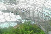 Nur für gute Nerven ist die schwingende Aussichtsplattform des Eden Project. (Bild: Geraldine Friedrich)