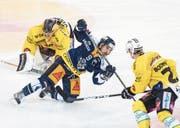 Zugs Garrett Roe fällt zwischen den Bernern Beat Gerber (rechts) und Leonardo Genoni zu Boden. (Bild: Urs Flüeler/Keystone (Zug, 30. September 2017))