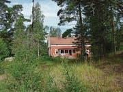 Ferienhaus mitten im Wald. (Bild: Monika Neidhart)