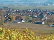 Hallau – ein schmuckes Dorf am Fuss seiner Weinberge. (Bild: Urs Bader)