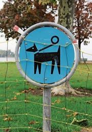 Schilder weisen auf die Leinenpflicht am Seeufer hin.