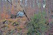 Die Bergung der Bäume im unwegsamen Gelände am Pizol gestaltete sich schwierig. (Bild: PD)