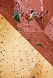 Nicht ungefährlich: Nur wer einen Kurs macht, darf die Wand hinauf. (Bild: Benjamin Manser)