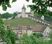 Zwei Thurgauer Staatsanwälte arbeiten neu in Schaffhausen. (Bild: Marcel Gillieron/Keystone)