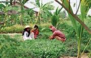 Die Landwirtschaft war das erste Standbein des Projekts. (Bild: PD)