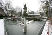Der Wasservogelweiher in der winterlichen Voliere im Stadtpark. (Bild: Hannes Thalmann)