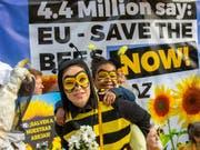 Freude bei Bienenfreunde in Brüssel: Die EU hat am Freitag ein Verbot von drei Insektiziden, so genannten Neonikotinoiden, beschlossen, die für Bienen als schädlich gelten. (Bild: KEYSTONE/AP Images for AVAAZ/OLIVIER MATTHYS)