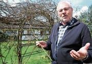 Ist mit den Rosen seit seiner Jugend stark verbunden: OK-Präsident Bernhard Bischof in seinem Garten. (Bild: Rita Kohn)