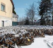 Wind und Wetter ausgesetzt: die O-Bikes an der Langgasse. (Bild: Matthias Fässler)