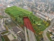 So soll der Autobahndeckel mit der neuen Messehalle dereinst aussehen. (Bild: Visualisierung: PD)