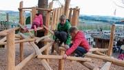 Von Baum zu Baum: Die Kinder freuen sich an den neuen Klettermöglichkeiten. (Bild: Barbara Hettich)