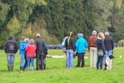 Interessiert verfolgen die Zuschauer die Meisterschaft der Hütehunde. (Bild: Daniela Ebinger)