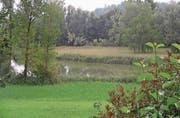 Der Bildweier in Winkeln. Das Gewässer und sein Umfeld sollen ein Paradies für Vögel und Amphibien bleiben. (Bild: Reto Voneschen)