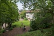 Die Randbereiche der Schulanlage Tschudiwies sind eine grüne Oase fürs Quartier und seine Kinder. Daran will die Stadt vorläufig auch nichts ändern. (Bild: Samuel Schalch - 19. August 2016)