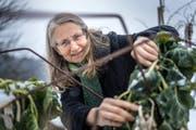 Luzia Steiner in ihrem Gemüsegarten in Abtwil. (Bild: Michel Canonica)
