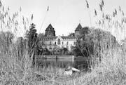 Leben in Zurückgezogenheit: Schloss Gottlieben, vom Seerhein her gesehen; undatierte Aufnahme. (Bild: Amt für Denkmalpflege des Kantons Thurgau)