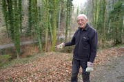 An diesem Abhang fand Waldbesitzer Manfred Hunziker am Donnerstag den Teppich, in den eine weibliche Leiche eingerollt war. (Bild: Mario Testa)