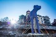 Der blaue Hund «Hock» ist einer Dogge nachempfunden. Am Dienstag wird die Skulptur von Anita Zimmermann am Mühlensteg 8a offiziell getauft. (Bild: Benjamin Manser)