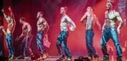 Die Chippendales reissen sich ihre Leibchen vom Körper und präsentieren einer Halle voller Frauen ihre Sixpacks – so auch vorgestern Freitagabend im Pentorama in Amriswil. (Bilder: Reto Martin)