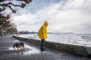 """Der Sturm """"Burglind"""" fegte Anfang Januar über die Schweiz. (Bild: Urs Bucher)"""