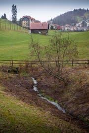 Das Projekt für die Bachoffenlegung im Tal der Demut verzögert sich. Der Bach im Vordergrund beim Sportplatz der Gewerbeschule soll in Richtung St.Georgen (Hintergrund) geöffnet werden. (Bild: Ralph Ribi)