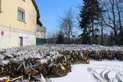 Die O-Bikes stehen seit vergangenem Herbst auf einem Parkplatz an der Langgasse. (Bild: Matthias Fässler)