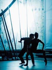 Liebe ist körperlich, das wird in allen drei Tanzstücken deutlich. (Bild: Theater St. Gallen/Ian Whalen)