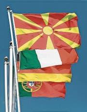 In Amriswil liegen die Mazedonier vor den Italienern, den Deutschen und den Portugiesen. (Bild: PD)