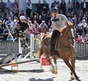 Die Pferde sind wieder die heimlichen Stars der Offa. (Bild: PD)