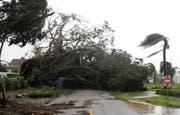 Hurrikan Irma hat in Naples riesige Schäden hinterlassen. (Bild: Keystone)