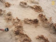 Einige der ausgegrabenen sterblichen Überreste eines Kinderopfer-Rituals im Norden Perus (Bild: KEYSTONE/AP National Geographic/GABRIEL PRIETO)